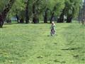 Devojcica na biciklu