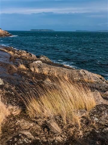Cliffside shore