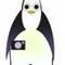 x10 article 1 penguin