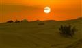 Sunset at the Desert