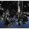 Rio Botanical Garden reflections bordersll