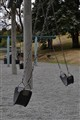 Swings having fun.