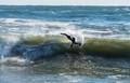"""""""Jonas"""" Surf, Hampton, NH (USA)"""