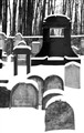 Jewish cemetery in winter
