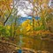 Brandywine River-PA