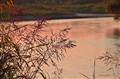 canadian creek sunset june