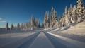 Trysil - Trysilfjellet