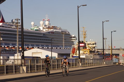 Nice pair foregrounding  photo of Carnival Glory cruise ship