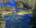 The Autumn Colors of Twin Lakes Mammoth Area California