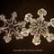 Snowflake 2014 P3010453 1200