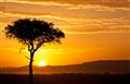 mara sunrise