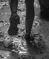 Muddy Memories