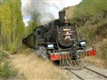 Patagonian Steam