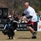 Incredible_Dog_20110402_158