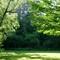 Morning bright: Gibbons Park London ON