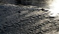Lehigh rapids