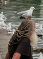 man with a bird on his head