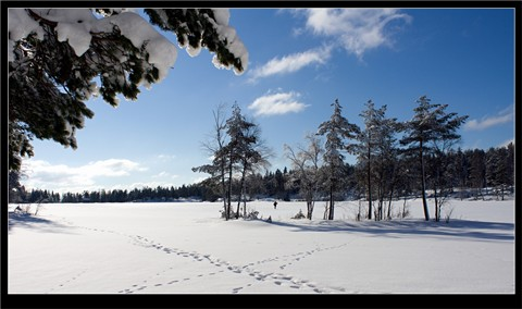 Winter_Landscape