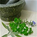 Thymeless Herbs