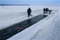 Swimming-Siberia