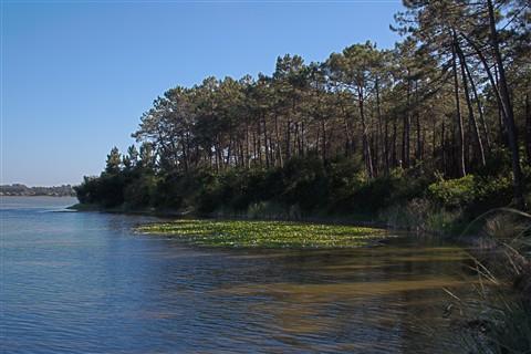 Recanto na Lagoa da Vela - Figueira da Foz