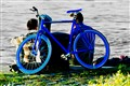 I love my blue bicycle