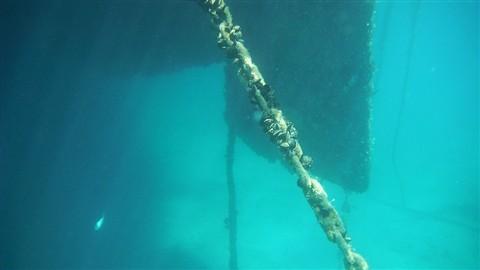 UnderwaterVista