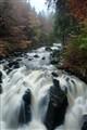 River Braan, Dunkeld, Scotland