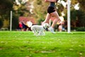 Girl Runing With Her Dog