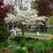 Spring garden: London ON