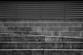 Steps IMG_5567