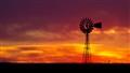 McCown's Windmill