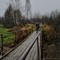 Autumn day, Gorelovskoye, Yaroslavl Oblast, Russia: Autumn day, Gorelovskoye, Yaroslavl Oblast, Russia