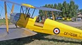 Tiger Moth Prepares for takeoff.