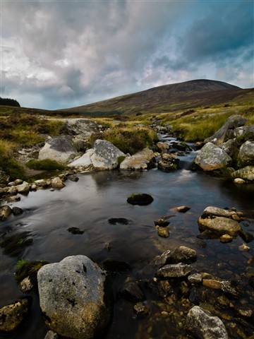 Wicklow Stream and Rocks