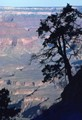 Grand Canyon from Kaibab Trail