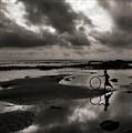Life wheel ....