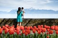 Baby, tulips, and a view