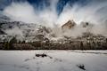 Frozen Yosemite-7993