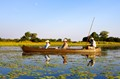 A late afternoon canoe safari on the incredible Okavango Delta - Camp Okavango - Botswana.