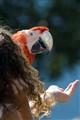 Girl & Parrot