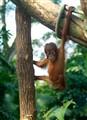 Just Hangin Around.