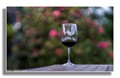 blooming hill wine