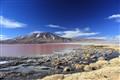 Bolivia: Laguna Colorada