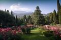 Nikitski Botanical Garden, Yalta, Crimea
