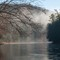 Bending Trees over the Clarion River No9 (D700): Trees bending over the Clarion River in Cook Forest State Park, Pennsylvania on a foggy morning during Winter.