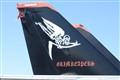 Hornet Plane Tail Stencil