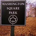 Essential square...