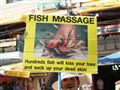 Fish Massage