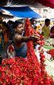 Flower seller at Kalighat